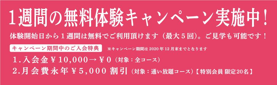 新規オープン特別入会キャンペーン